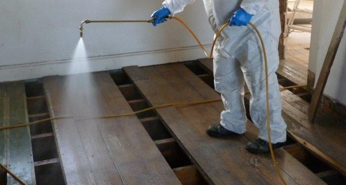 spraying woodworm treatment